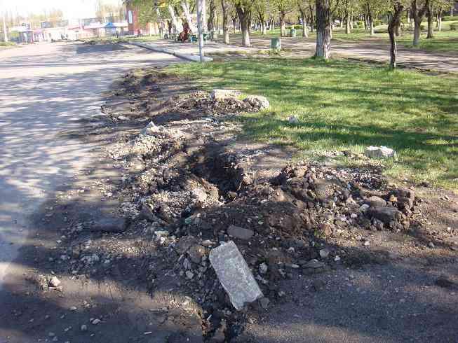 С приходом весны в Терновке развернулась ночная охота за туями
