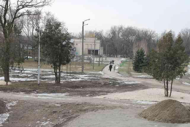 20 красных дубов семья подарит старинному павлоградскому парку
