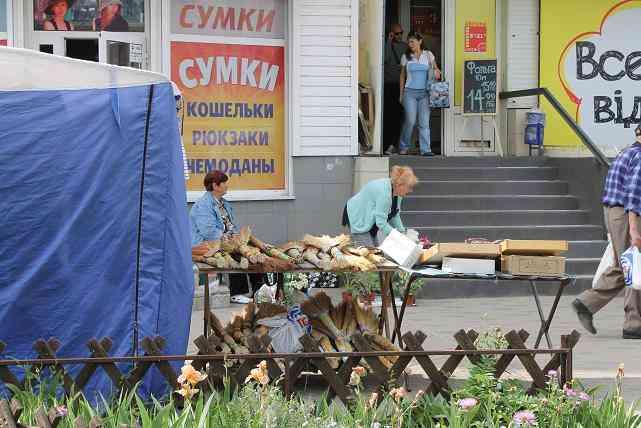 За использование зеленых насаждений,   тротуаров, пешеходных зон  для размещения    МАФов прокуратура , в Новомосковске, ударила по депутатским рукам
