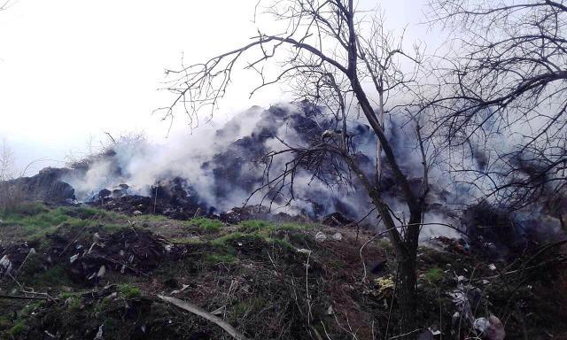 Целый день пожарные боролись с огнем, чтобы спасти Павлоград от угара