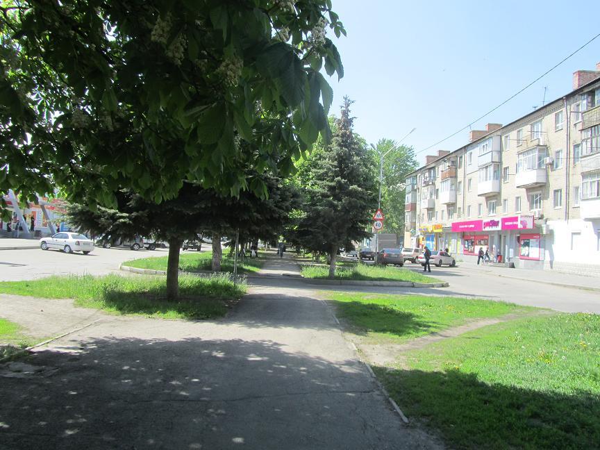 В Павлограде нотариус заверяла договора покойников с соседями о наследовании квартир