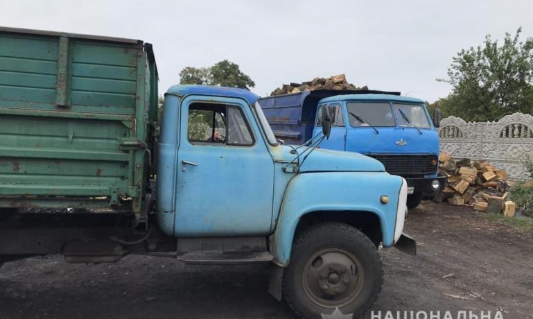"""У """"черного лесоруба"""" из Петропавловки изъяли 15 тонн древисины"""