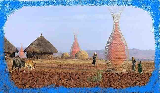 Западный Донбасс может обеспечить себя качественной питьевой водой из воздуха, - закупаем бамбук