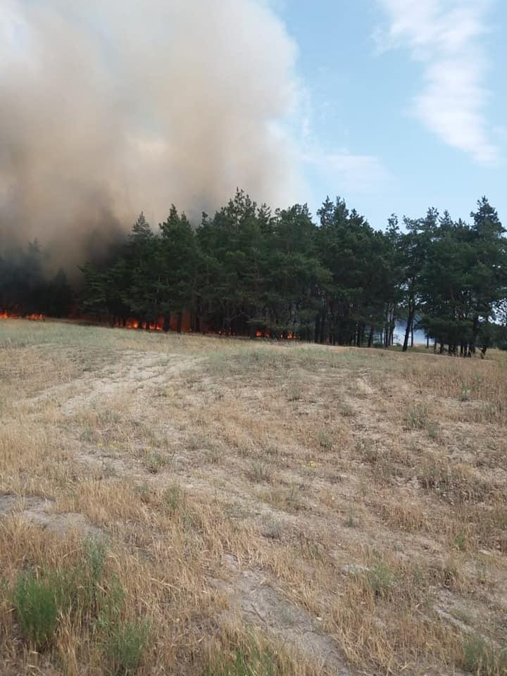За неделю спасателям Павлоградцины 8 раз пришлось тушить пожары в экосистемах