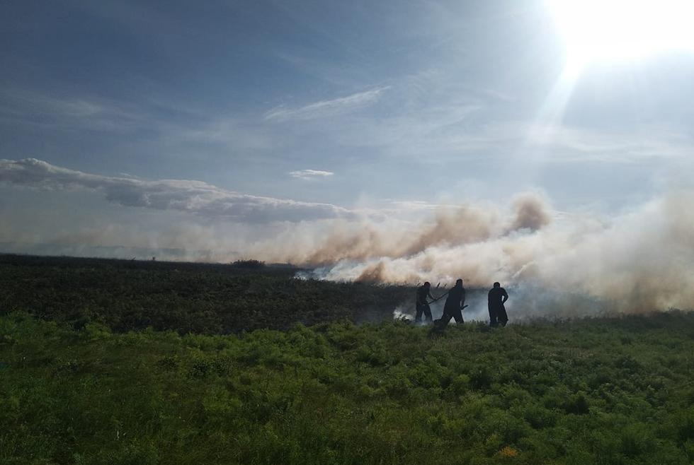 4 гектара сухой травы и камыша уничтожил огонь под с. Приволчанское