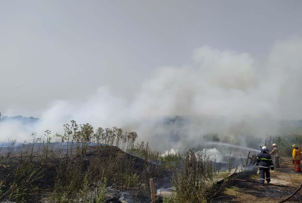 Счет на гектары: под Юрьевкой огонь уничтожил траву и камыш
