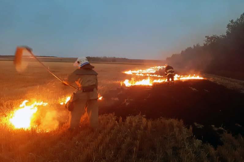 Сезон степных пожаров накрывает Днепропетровщину