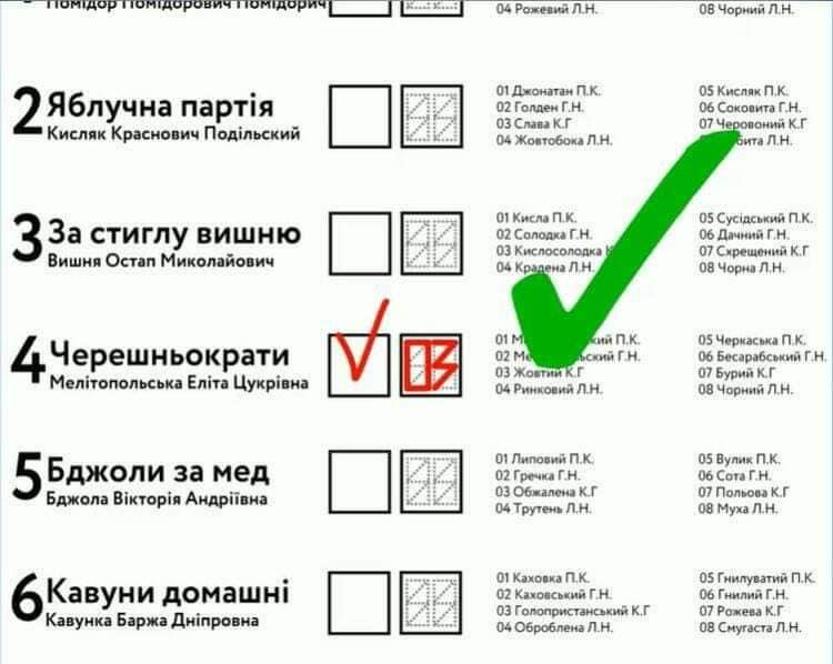 Чтобы правильно проголосовать 25 октября, нужно уметь читать, чертить и, главное, - думать