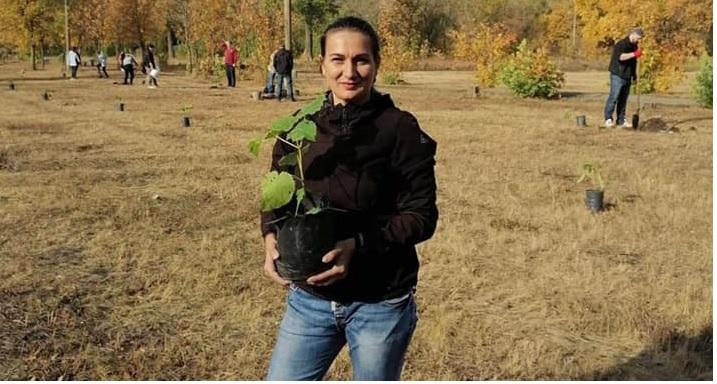 Неизвестные шарамыги растоптали достоинство Павлограда и украли деревья