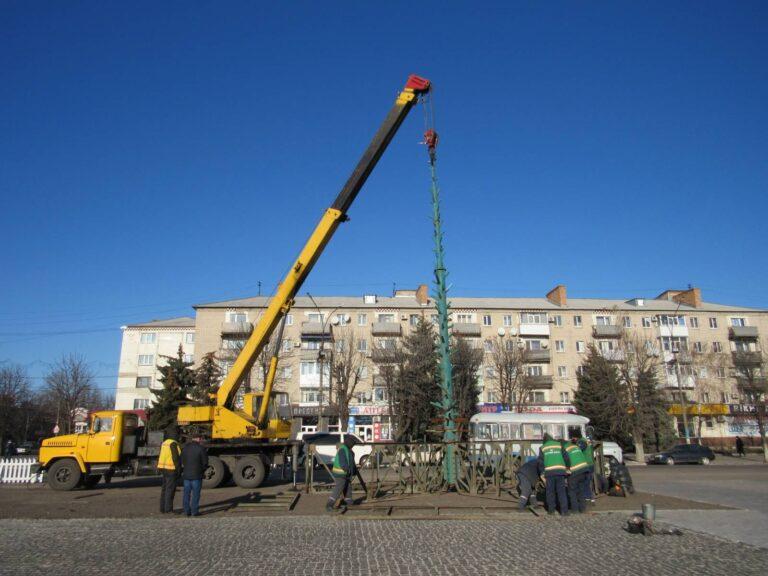 На сооружение новогодней елки Павлоград  израсходует  400 молоденьких сосен