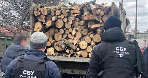 """Один из начальников  """"Укрзалізниці"""", на Днепропетровщине,  вырубал деревья вблизи железной дороги, не ожидая крушения поездов"""
