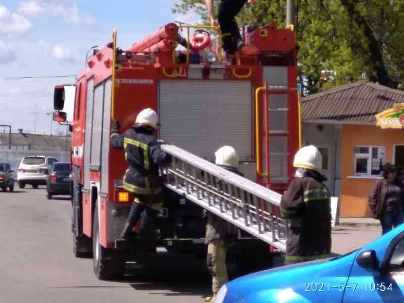 В Павлограде шустрая девочка закрыла себя в квартире, - пришлось вызывать спасателей