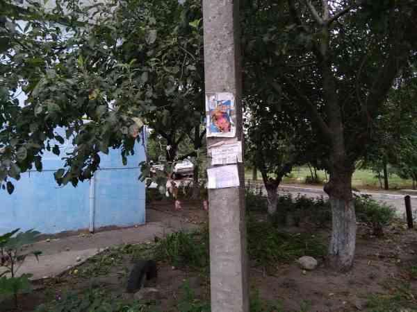 В Павлограде Илона Маска используют для рекламы наркотиков, - листовками обклеены все дворы