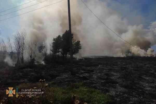 От горящей травы воспламенился лес в районе Богуславских песков